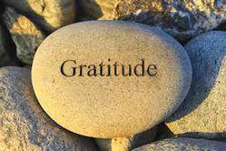 gratitudediaryanuacharya
