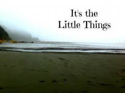 thelittlethingscount