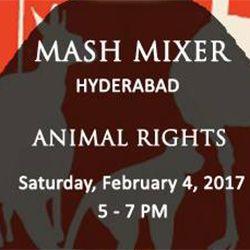 1485502571mash-mixer-thumbnail-hyd