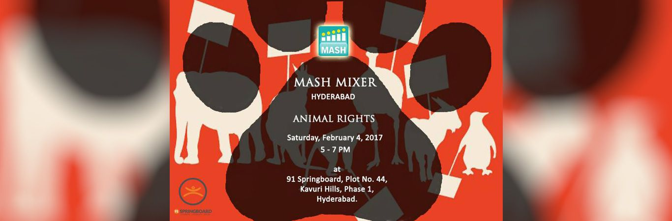 1485502572mash-mixer_banner-hyd