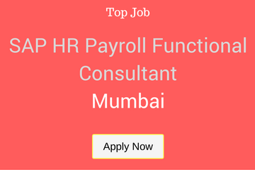 SAP HR PAYROLL FUNCTIONAL CONSULTANT